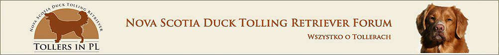 Nova Scotia Duck Tolling Retriever Forum